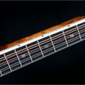 F5 Standard - Quilted maple